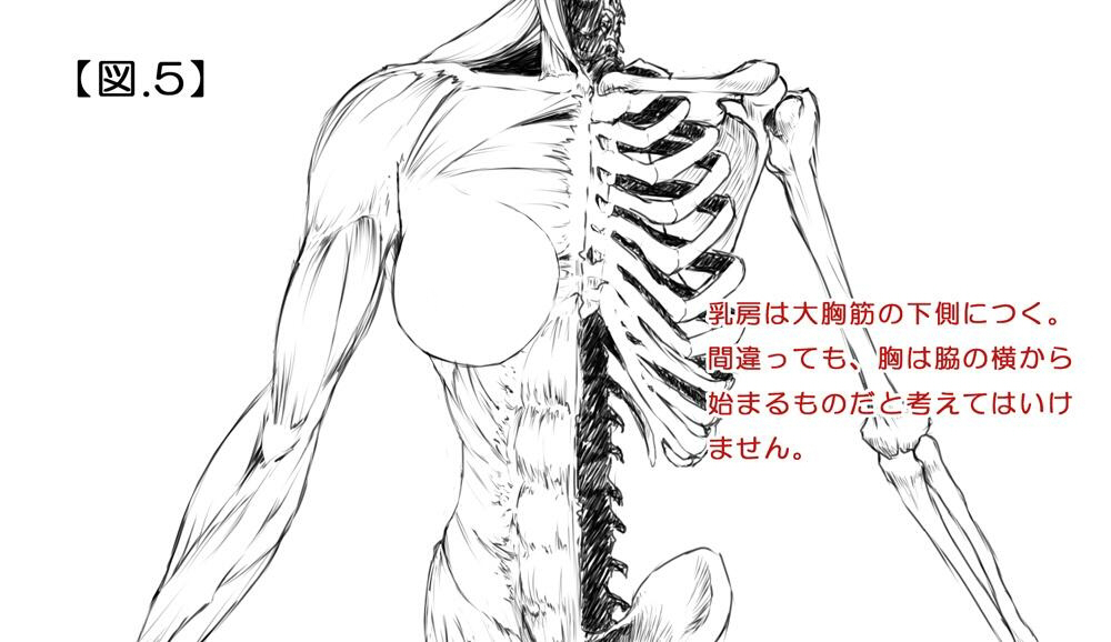 130520_すかぢ_04