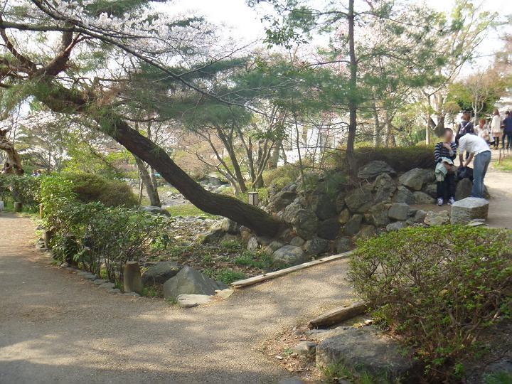円山 (11)a