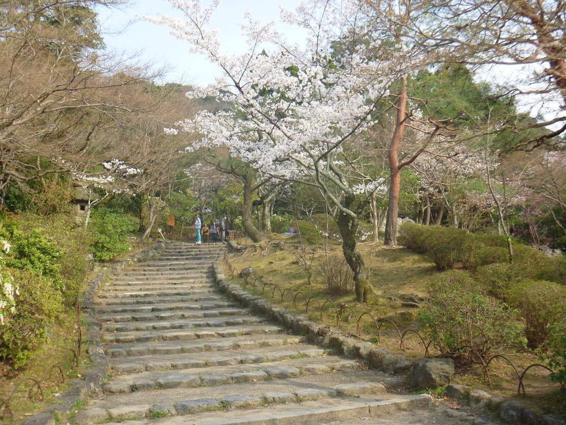 円山 (8)a