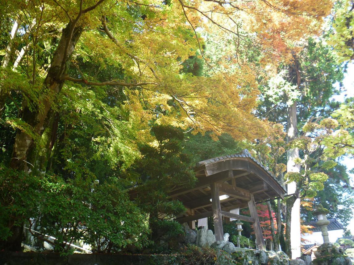 天神社 (9)
