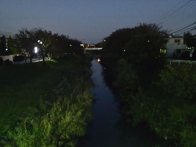 PA170449_R.jpg