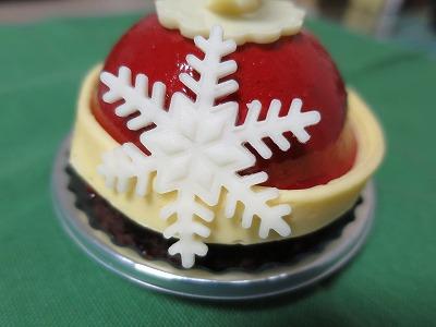 クリスマスケーキ(ヴィタメール) (10)