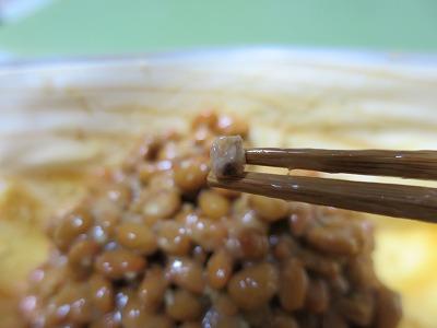 水戸納豆 (15)