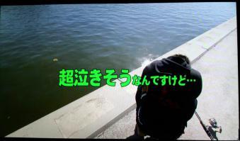 DCF00014_20130317162020.jpg