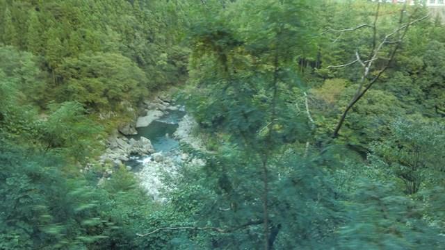 国道140号線から見た大滝エリアの荒川