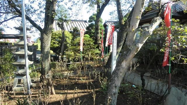 母巣山少林寺の敷地