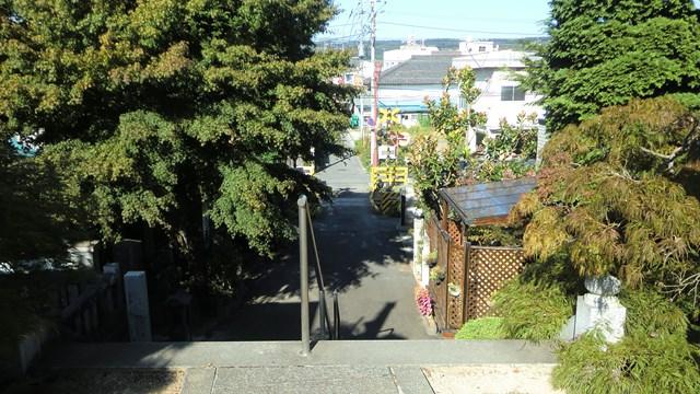 母巣山少林寺から眺めた景色
