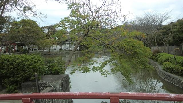境内にある池