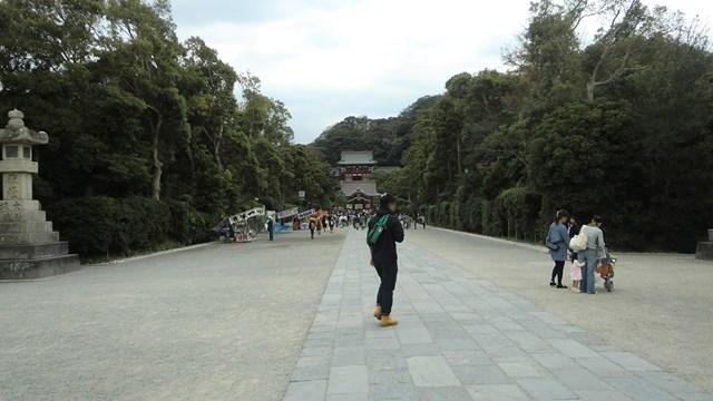 鶴岡八幡宮境内の参道