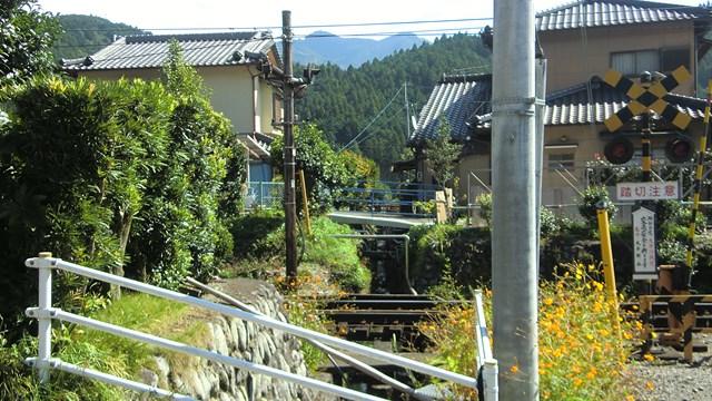 静岡県の田舎の光景