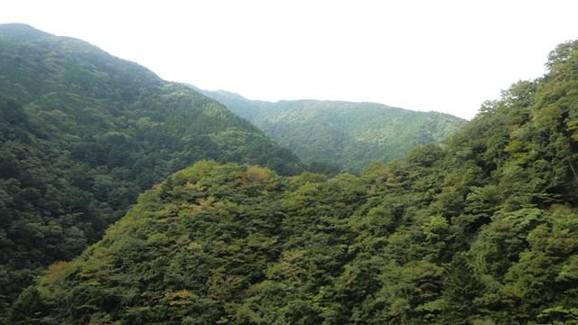 関の沢鉄橋から見た山々1