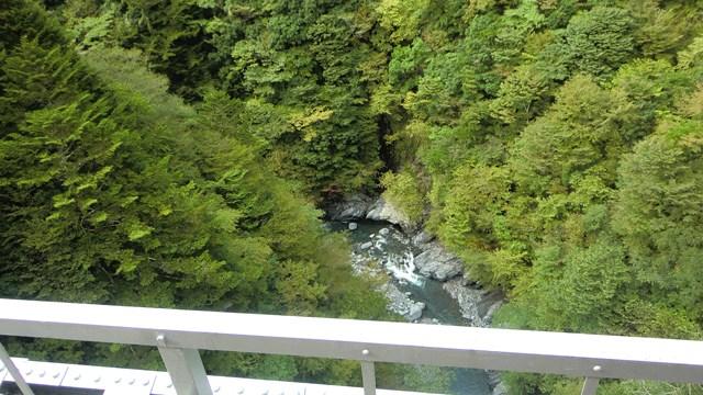 関の沢鉄橋の谷底1