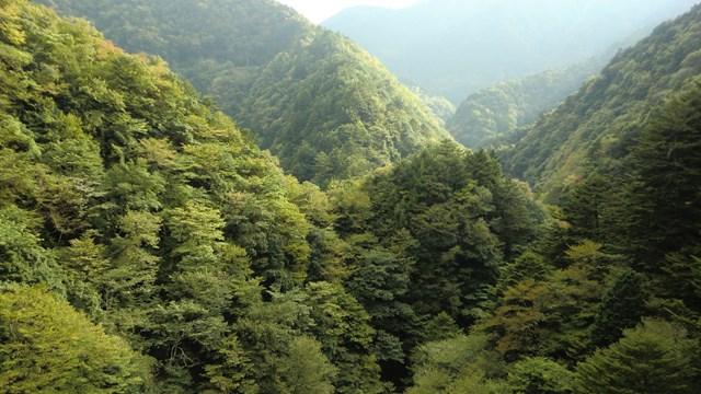 関の沢鉄橋から見た山々2