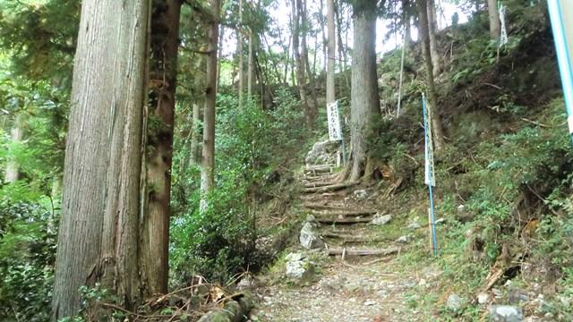 外森山ハイキングコース1