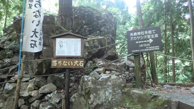 外森山ハイキングコース2