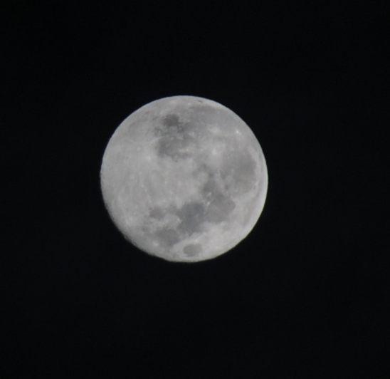 20120901-01.jpg