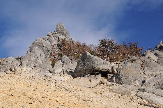 20121105-08.jpg