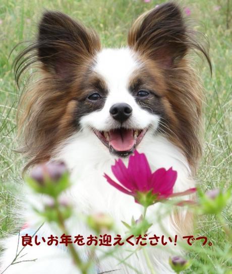 2012_1014_094047-DSC01140(2)_convert_20121228165211.jpg