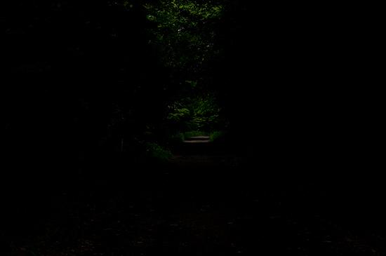 海上の森-12