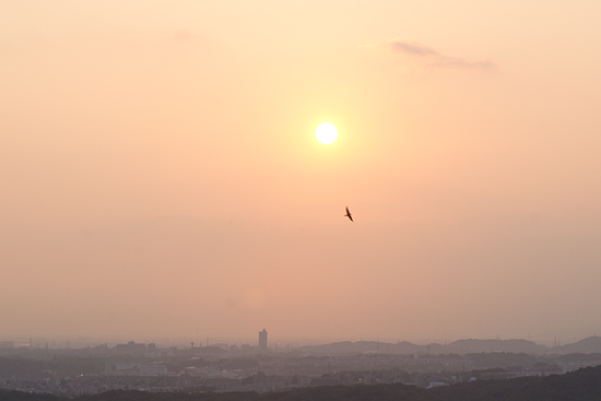 定光寺俯瞰-10
