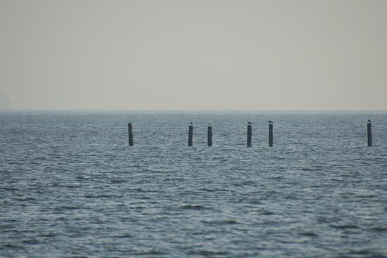 常滑の海風景