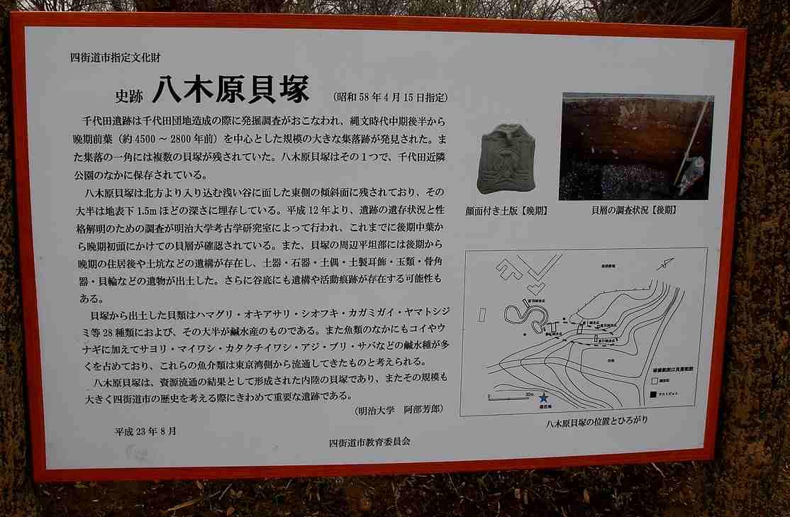 20120222chiyoda01.jpg