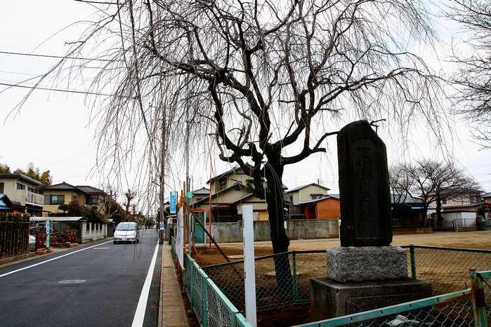 20120222kuriyama01.jpg