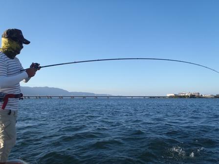 テストロッドでしっかり釣ります。