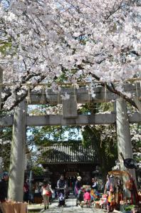 4月1日 鳥飼八幡宮(福岡市中央区)