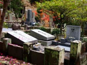 寿福寺2_convert_20121202215526