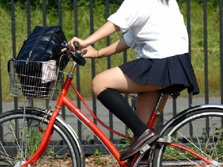 自転車通学してるJKのふとももむちむちすぎシコたwww