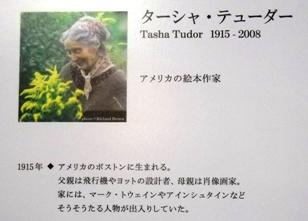 ターシャ1