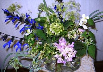 庭の花13.6