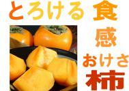 kaki_image1.jpg