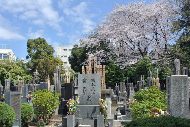 7)板谷波山墓碑