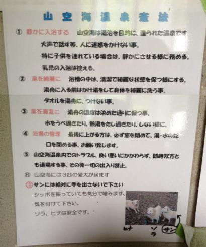 山空海温泉憲法