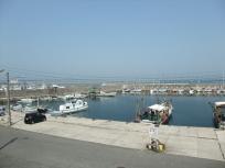目の前は漁港です