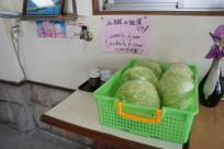 畑でとれた無農薬新鮮野菜も売ってます