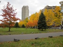 中島公園 紅葉がちょうど美しい時期でした。でも人っ子一人おらず(笑)。