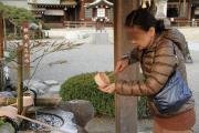433 熊本 水前寺成趣園