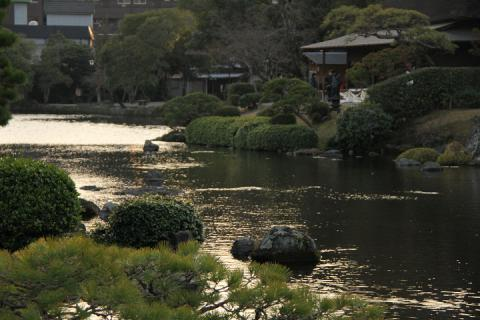 438 熊本 水前寺成趣園