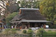 454 熊本 水前寺成趣園