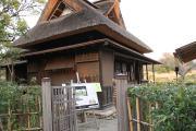 464 熊本 水前寺成趣園