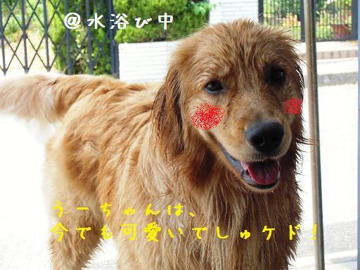 CIMG1636_20120810162056.jpg