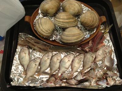 貝と子供魚