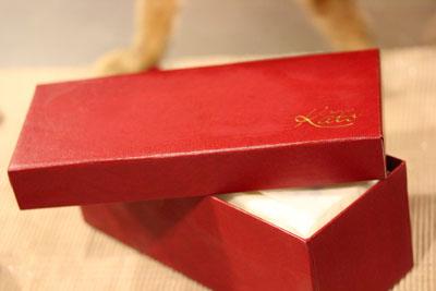 素敵赤い箱