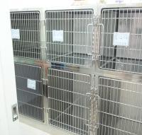 入院室 犬