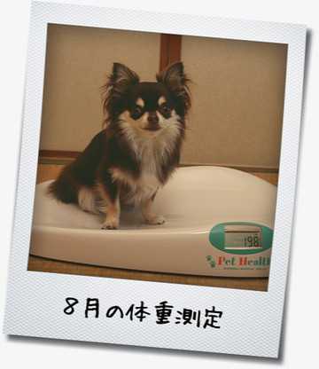 SIMG_2350_20120803212218.jpg