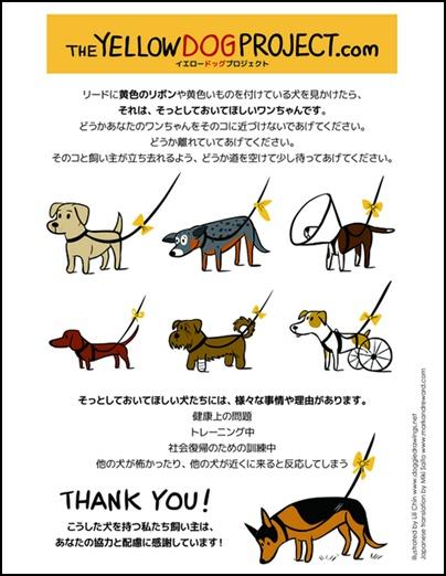 YELLOW-DOG-PROJECT20130620.jpg