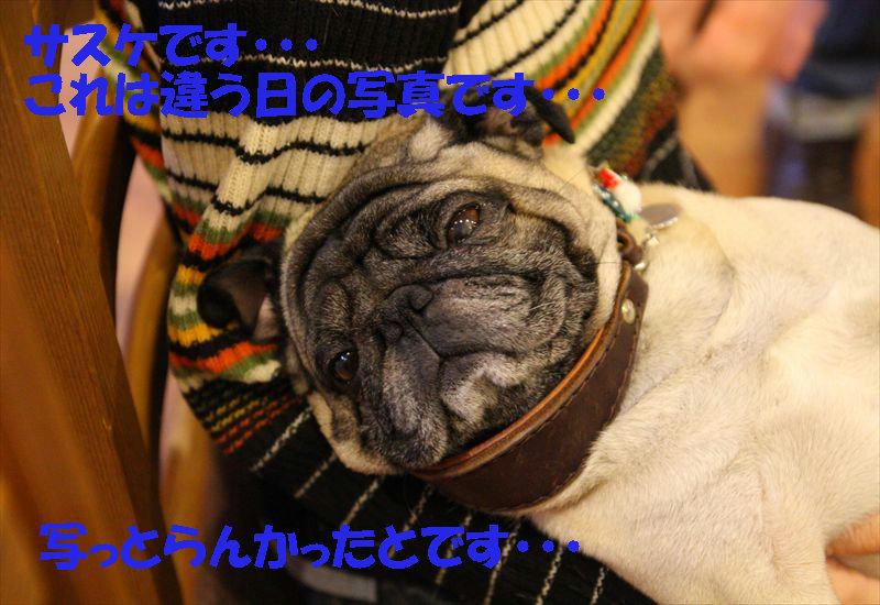 20121223kofu 185_R